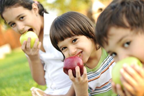 sugar free snacks like fruits for kids